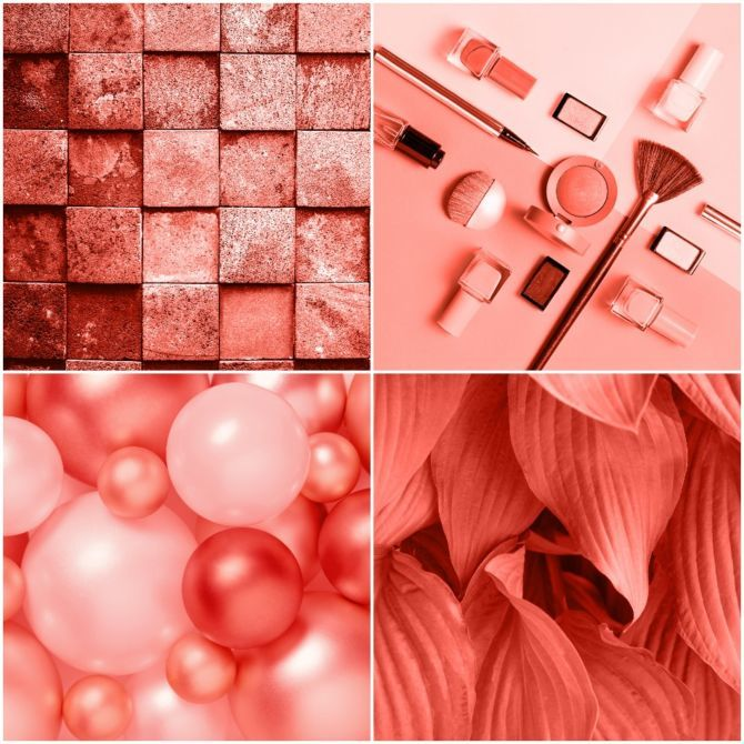 Pantone colour of the year 2019 living coral trendaroma - 2019 color of the year ...